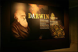Darwin exhibition entrance