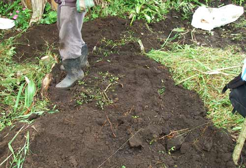 Stamping down the dirt. Costa Rica, 7-10-06 - natasha