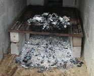 Burned bones. Finca Montezora, Costa Rica, 7-20-06 � natasha