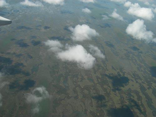 Florida swamp from the air, 6-23-06. � natasha