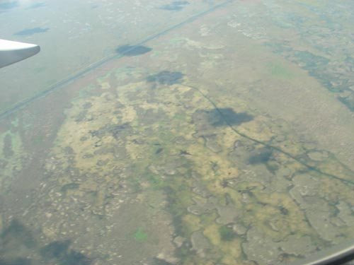 Yet another Florida swamp from the air, 6-23-06. � natasha